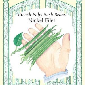 French Baby Bush Beans