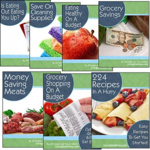 How to Save Money On Groceries e-Course (e-books and videos)