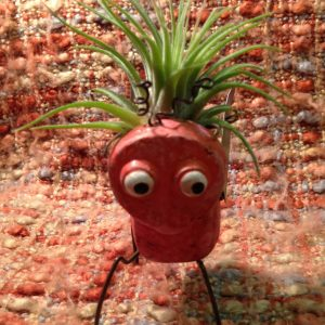Tilla Critters Bugga Boo One of a Kind Air Plant Creations from Chili Fiesta HandiWorks