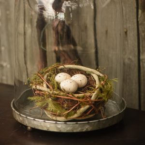 """5.5"""" Grapevine Nest with Eggs"""